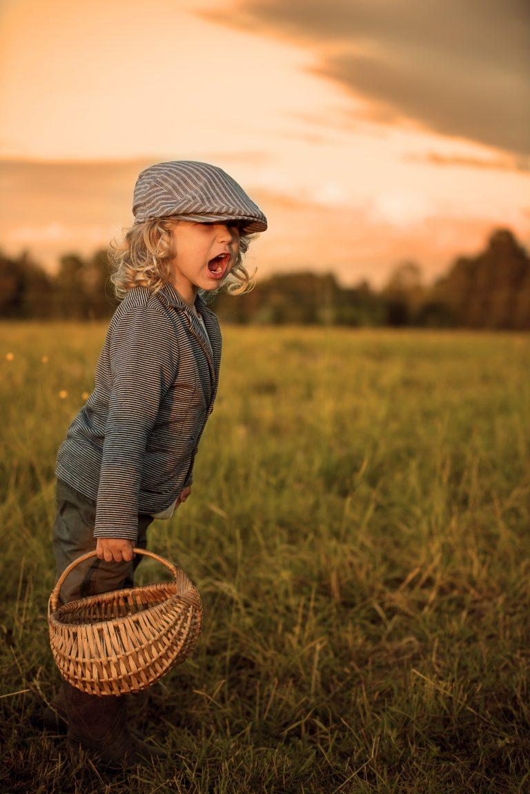 bērna fotosesija vasarā pļavā
